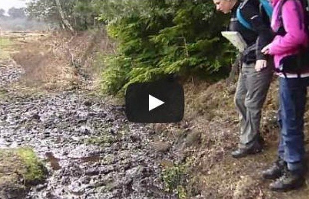 How Not To Jump Over Mud