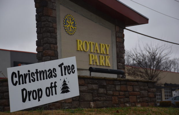 Recycle your live Christmas trees at local parks | WCVQ-FM : Q108